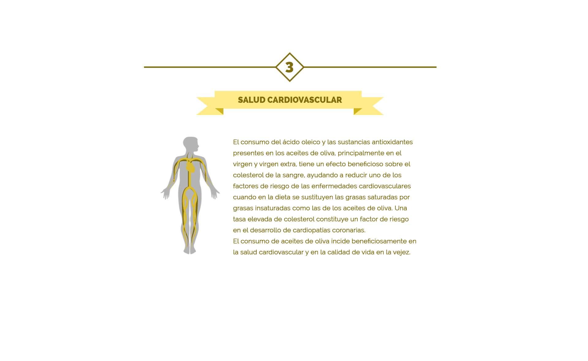 el consumo del aceite de oliva reduce el riesgo de enfermedades cardiovasculares