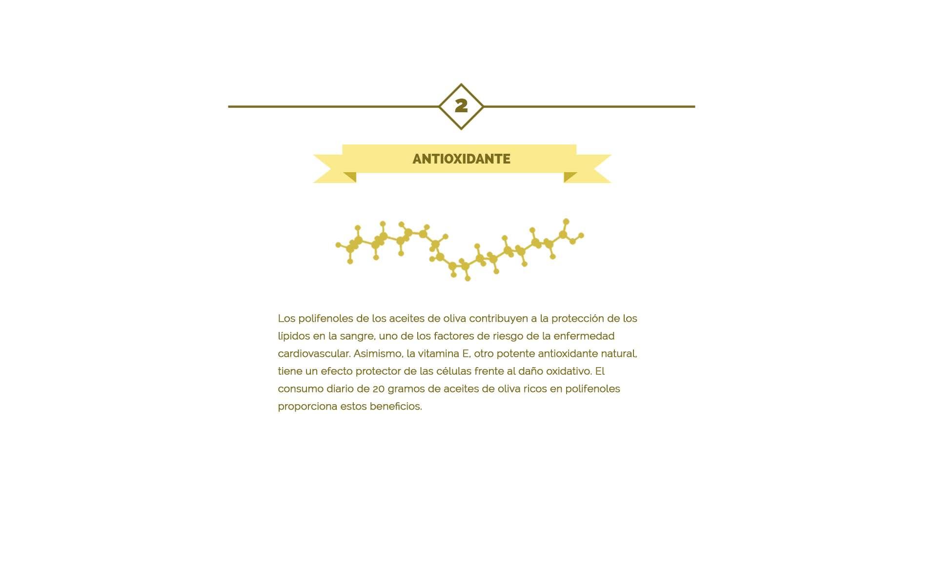 antioxidantes en el aceite de oliva