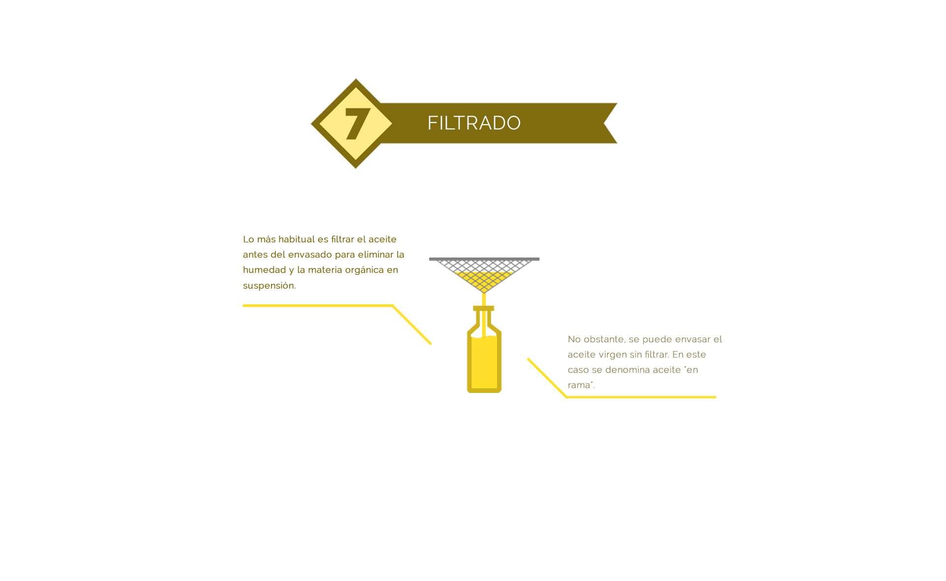 filtrado del aceite de oliva