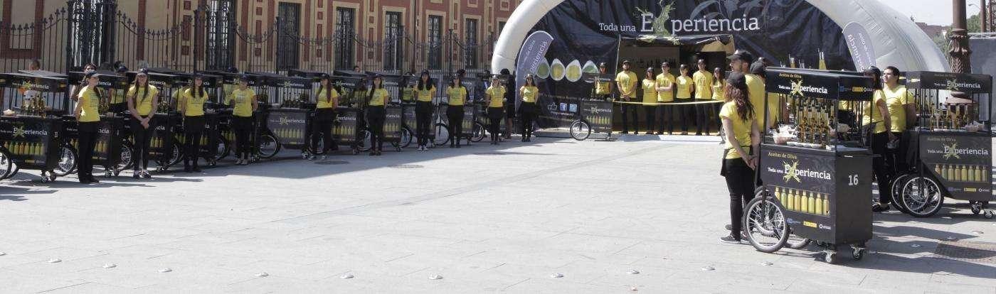 El programa de Promoción trata de acercar la cultura de los Aceites de Oliva al gran público