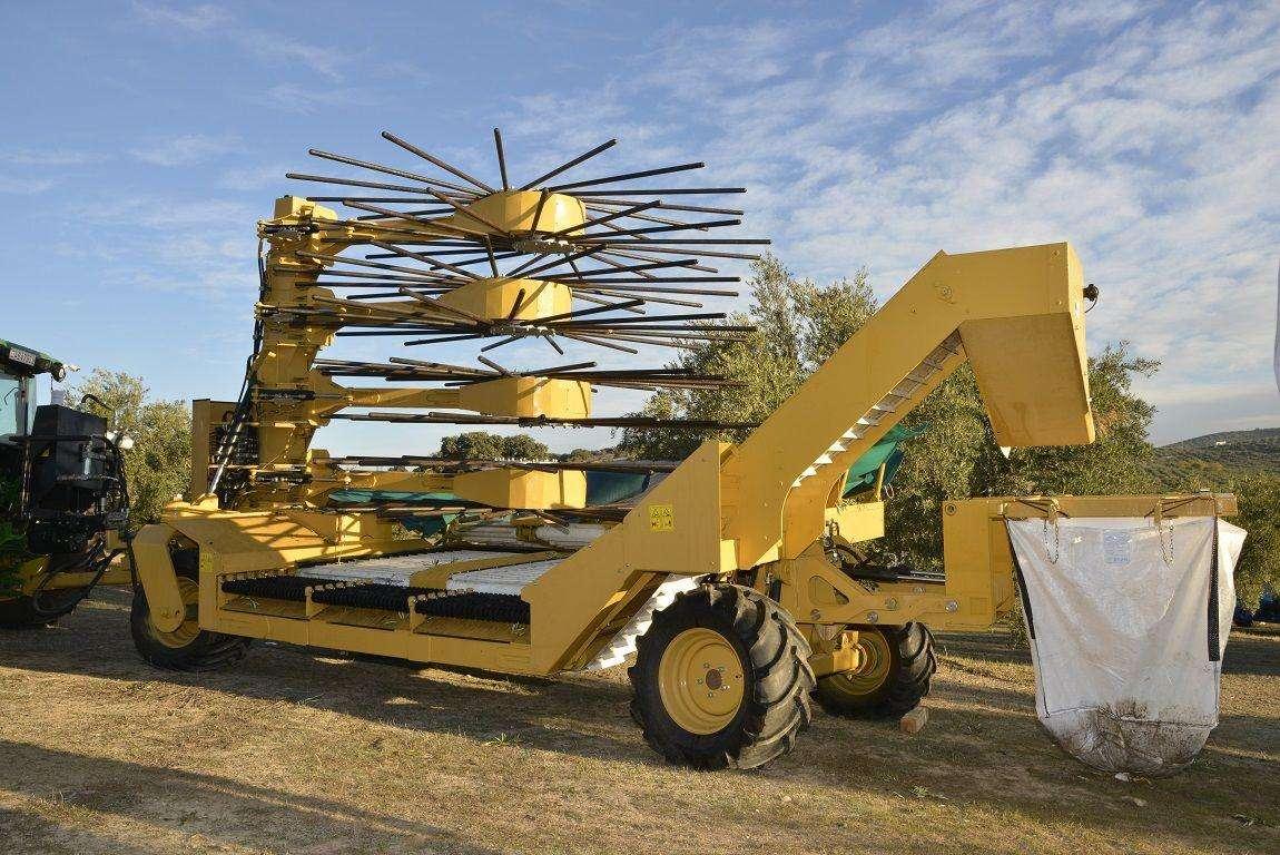 El proyecto MECAOLIVAR ha desarrollado soluciones específicas para la recolección del olivar tradicional
