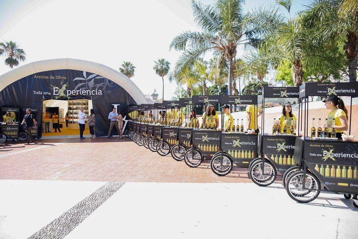 Málaga acogió la Semana de los Aceites de Oliva y el recorrido de los carritos de los Acietes de Oliva