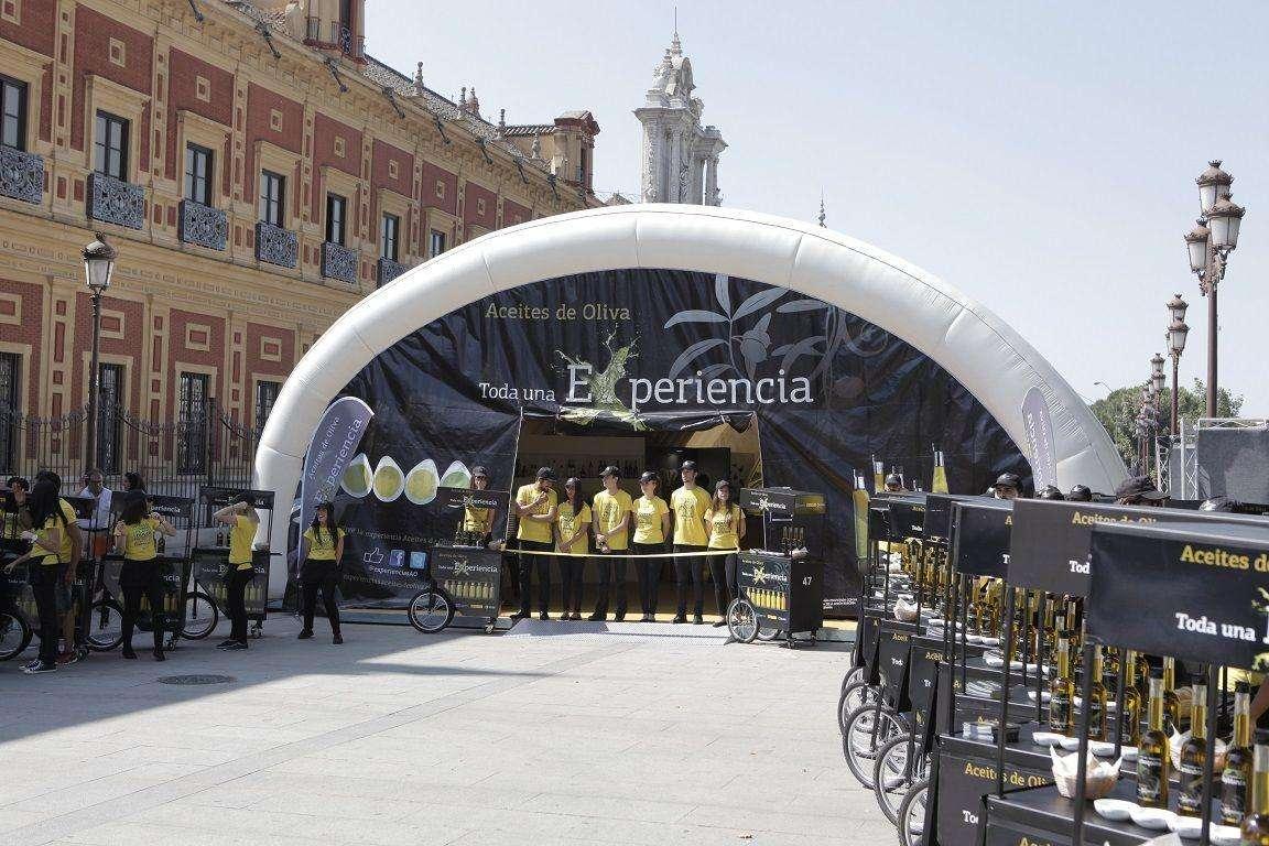 Sevilla acoge la Semana de los Aceites de Oliva