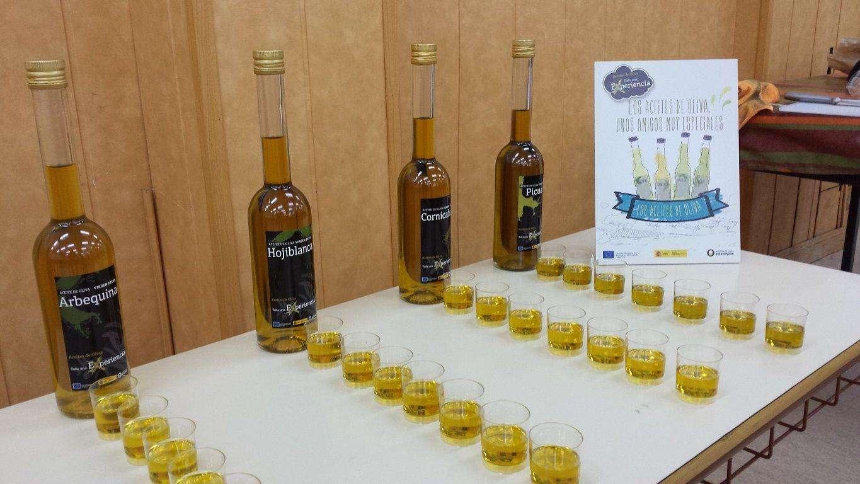 Taller de aceite de oliva en colegios