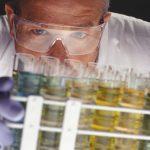 Efecto de la ingesta de aceite de oliva virgen extra sobre la diabetes gestacional