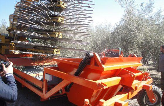 Innovaciones y nuevas tecnologías en el olivar – MECAOLIVAR