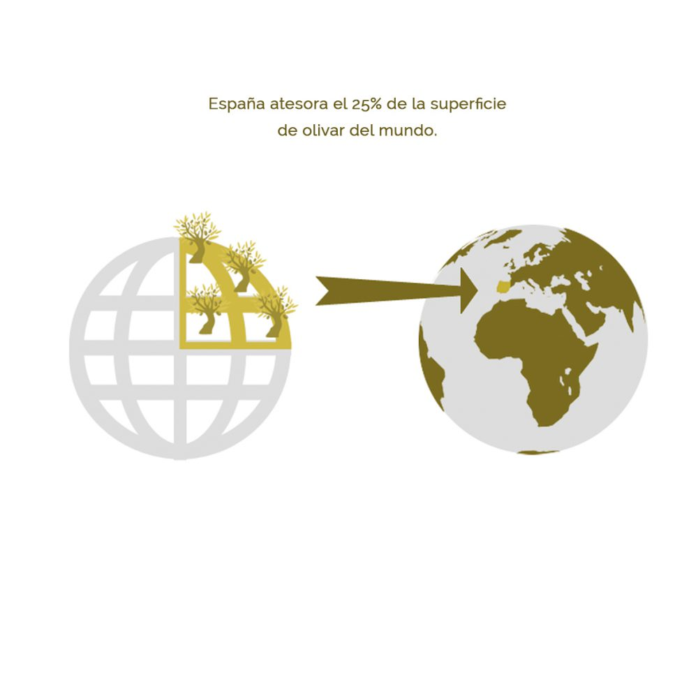 02 – España, líderes mundiales