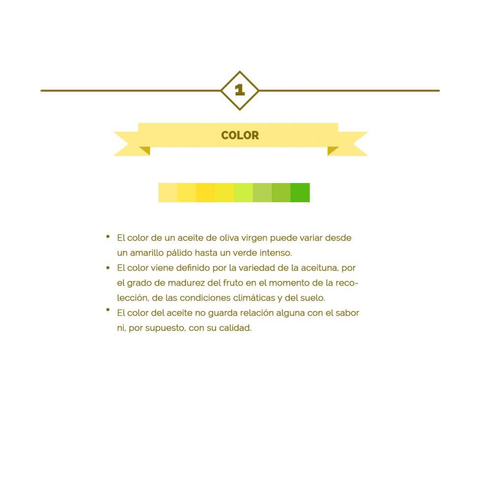 01 – Las 10 claves del aceite de oliva