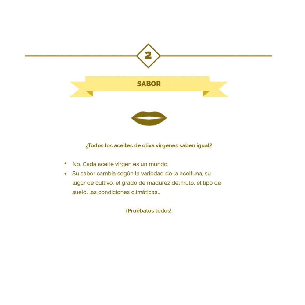 02 – Las 10 claves del aceite de oliva