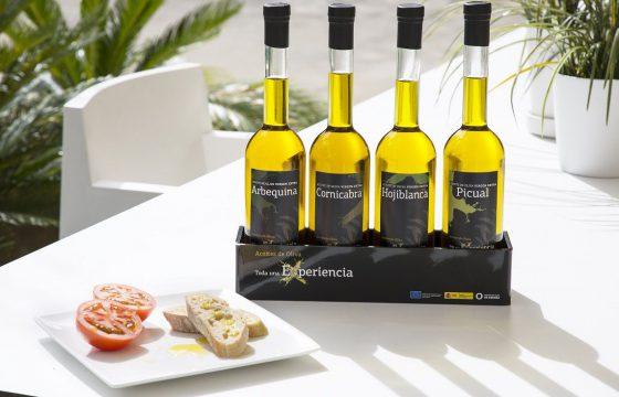 Quesos y aceites de oliva virgen extra: un maridaje perfecto