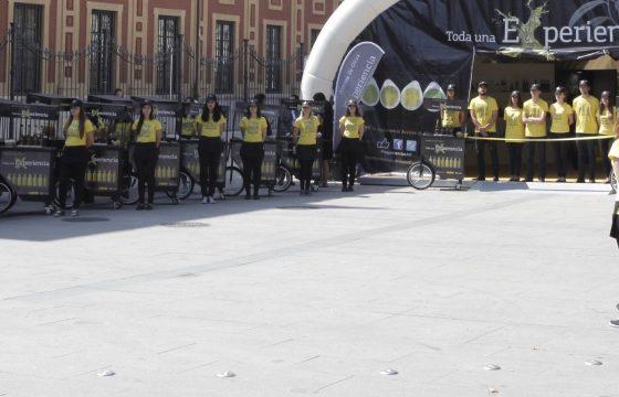 La campaña de promoción de los Aceites de Oliva intensifica las acciones en su recta final