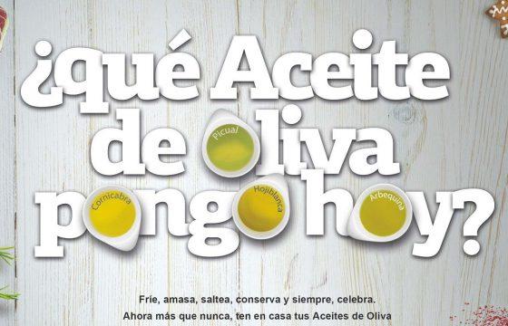 Luces… Cámara… ¡Aceites de oliva!