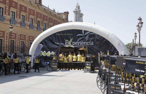 Semana de los Aceites de Oliva en Sevilla, una sabrosa Experiencia al alcance de todos