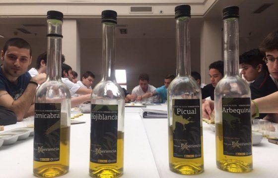Disfruta de un nuevo gazpacho cada día alternando las distintas variedades de aceites de oliva virgen extra