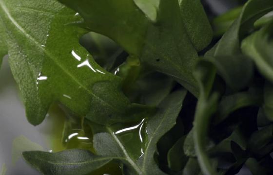 Vinagreta de jengibre y limón