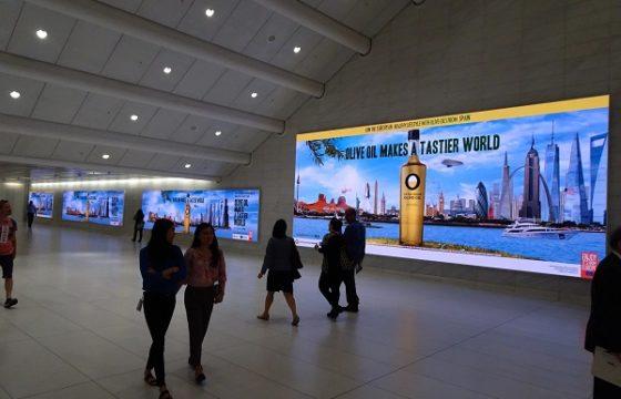 """La campaña de promoción """"Olive Oil Makes a Tastier World"""" anima las ventas de los aceites de oliva en EEUU"""