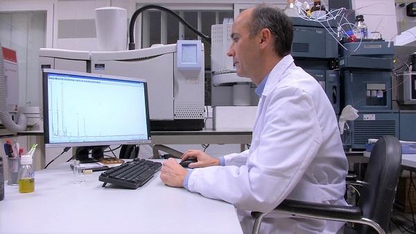 Los grupos de investigación llevan seis años trabajando en las diferentes tecnologías aplicables a la clasificación de los aceites de oliva