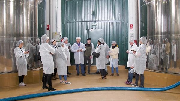Los periodistas pudieron ver el proceso de elaboración del aceite de oliva virgen