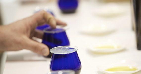 Cata de Aceites de Oliva de España en la Conferencia Internacional Tomorrow Tastes Mediterranean