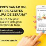 """BASES LEGALES DEL CONCURSO """"SORTEO LOTE DE ACEITES DE OLIVA DE ESPAÑA"""" EN INSTAGRAM"""
