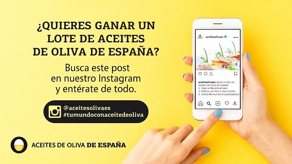 Aceites de Oliva de España Mundial de Tapas de Valladolid