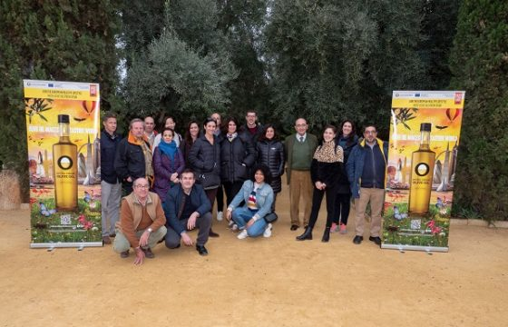 Periodistas estadounidenses y españoles admiran el mayor olivar del mundo desde el cielo