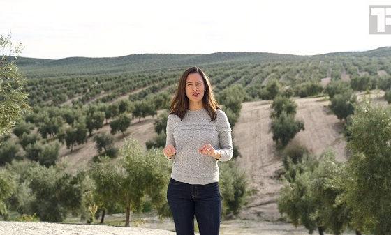 La Interprofesional colabora con el canal norteamericano True Food TV para mostrar al mundo la producción de Aceites de Oliva de España, como país líder mundial en este sector