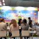 Las ventas de Aceite de Oliva español en Alemania crecieron un espectacular 142% en la última década